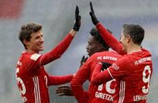 Đánh bại Freiburg, Bayern Munich vô địch lượt đi Bundesliga