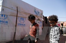 HĐBA lên án bạo lực nhằm vào người di cư, phụ nữ và trẻ em Yemen