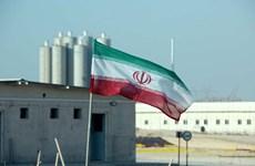 Nhà máy điện hạt nhân Bushehr của Iran có nguy cơ đóng cửa
