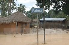 Quan chức Mỹ quan ngại trước hoạt động của IS ở Mozambique