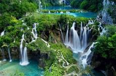 [Video] Những vườn quốc gia ấn tượng nhất của Việt Nam
