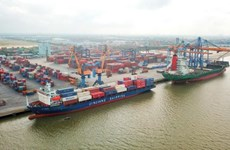 Thị phần của ASEAN trong thị trường vận tải biển tới Mỹ vượt 20%