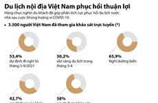 [Infographics] Du lịch nội địa Việt Nam phục hồi thuận lợi