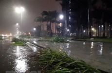 Tối 1/5, các khu vực đều có mưa dông kèm thời tiết nguy hiểm