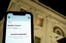 Twitter đình chỉ các tài khoản né lệnh cấm ông Donald Trump