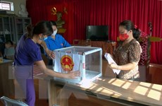 Bầu cử: Cử tri tham gia bỏ phiếu phải sử dụng bút, thước riêng
