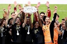 Bundesliga hạ màn: Lewandowski lập kỷ lục, Bremen xuống hạng