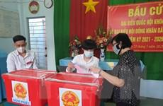 Cử tri Bình Dương, Bình Phước đi bầu cử trong tình hình dịch kiểm soát