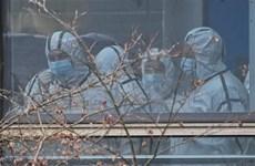 Mỹ thúc đẩy điều tra độc lập về nguồn gốc của virus SARS-CoV-2