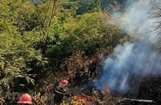Quảng Ngãi: Nắng nóng gay gắt, cảnh báo nguy cơ cháy rừng