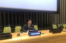 Các thành viên Hội đồng Bảo an bàn về thúc đẩy bình đẳng giới ở Sahel