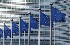 Nghị viện châu Âu tuyên bố chuẩn bị khởi kiện Ủy ban châu Âu