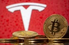 Tesla để ngỏ khả năng chấp nhận thanh toán bằng tiền điện tử