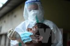 Tình hình dịch COVID-19 ngày 15/6: Hơn 161 triệu người khỏi bệnh