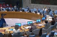 Hội đồng Bảo an họp về tình hình Sudan, Somalia và Cao nguyên Golan