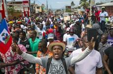 Việt Nam kêu gọi Haiti tiến hành bầu cử công bằng, minh bạch