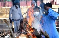 Phóng viên TTXVN tại Ấn Độ: Đi giữa những cơn sóng ngầm đang cuộn chảy