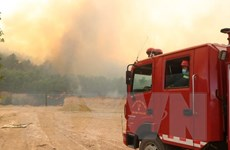 Thừa Thiên-Huế: Huy động tối đa lực lượng để khống chế cháy rừng