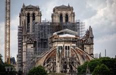 Pháp: Người dân khiếu nại về ô nhiễm chì sau vụ cháy Nhà thờ Đức Bà