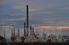 Nhà máy lọc dầu lớn nhất Nam Phi tạm ngừng hoạt động do bạo loạn