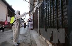 Algeria ghi nhận số ca mắc bệnh và tử vong cao chưa từng thấy