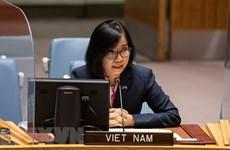 Việt Nam đánh giá cao đóng góp của UNAMID trong bảo đảm an ninh