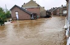Bỉ mở cuộc điều tra liên quan trận lũ khiến nhiều người thiệt mạng