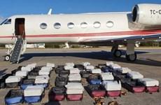 Cảnh sát Brazil thu giữ gần 1,3 tấn cocaine từ Thổ Nhĩ Kỳ