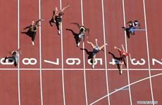 Video xem trực tiếp ngày thi đấu thứ 14 tại Olympic Tokyo 2020