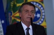 Tổng thống Brazil Jair Bolsonaro đối mặt với các thách thức pháp lý