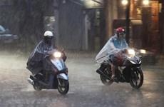 Bắc Bộ mưa to và dông, tập trung cao điểm vào sáng và đêm