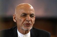 Afghanistan: Hầu hết quan chức cấp cao chính quyền cũ đã ra nước ngoài