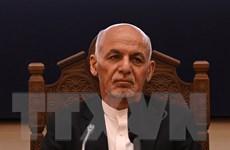 Phái đoàn chính quyền Tổng thống Afghanistan xin tị nạn ở Qatar