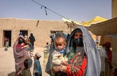 Các quốc gia kêu gọi Taliban đảm bảo quyền cho phụ nữ và trẻ em gái