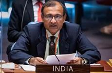Ấn Độ đảm bảo mối quan tâm của tất cả ủy viên Hội đồng Bảo an LHQ