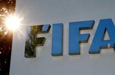 FIFA nhận hơn 200 triệu USD tiền tịch thu được từ các vụ tham nhũng