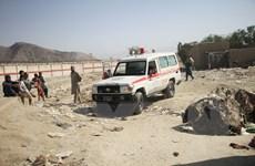 Thổ Nhĩ Kỳ chưa quyết định về đề nghị hỗ trợ vận hành sân bay Kabul