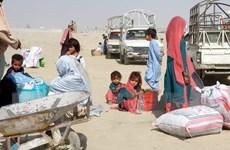 WHO: Chuyến bay cung cấp trang thiết bị y tế đã đến Afghanistan