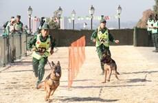 Trao đổi kinh nghiệm với Algeria về huấn luyện chó nghiệp vụ