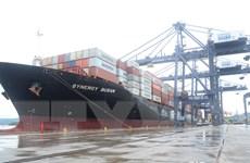 Tàu của hãng vận tải container lớn nhất thế giới cập cảng Cái Lân