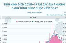 [Infographics] Tình hình dịch COVID-19 của các địa phương