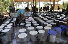Việt Nam là thị trường cung cấp cao su lớn thứ 11 cho Hoa Kỳ
