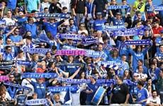 Tây Ban Nha: Sân vận động được mở cửa phục vụ tối đa 100% công suất