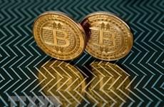 Đồng bitcoin vượt mốc 50.000 USD lần đầu tiên trong bốn tuần