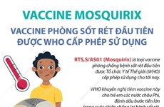 Vaccine phòng sốt rét đầu tiên được WHO cấp phép sử dụng