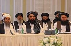 Taliban tổ chức đàm phán trực tiếp với đặc phái viên Mỹ và EU