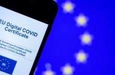 EU và Nga lên kế hoạch thảo luận về giấy chứng nhận tiêm phòng chung