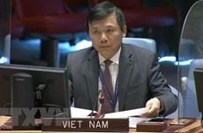 Việt Nam kêu gọi tôn trọng nguyên tắc giải quyết hòa bình tranh chấp