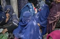 G20 nhất trí cần giải quyết cuộc khủng hoảng nhân đạo tại Afghanistan