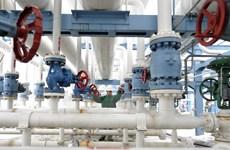 Giá dầu trên thị trường châu Á phục hồi trong phiên ngày 14/10